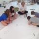 Workshop mit Edgar Honetschläger